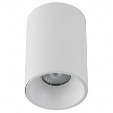 Накладной светильник Crystal Lux Clt 411 CLT 411C WH-WH